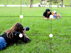 Dica de Fotografia 1: Regra dos Terços Project 52 - Week 2 - Rule of Thirds