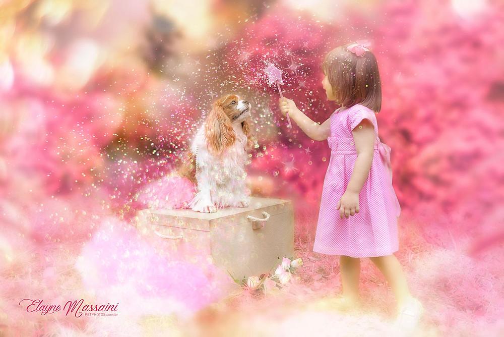 fairy dog photography