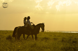 cavalo_pessoa24.jpg