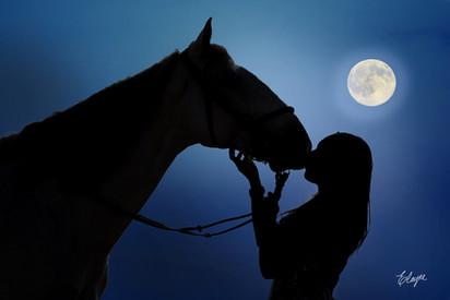 cavalo silhueta e lua cheia