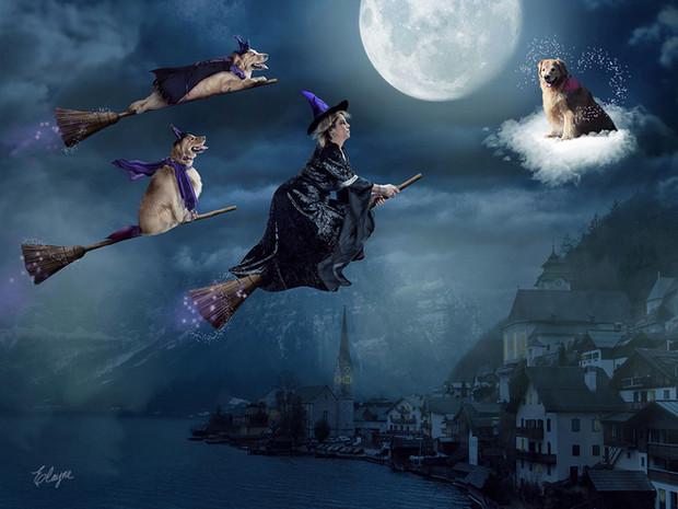 Sonho de Halloween