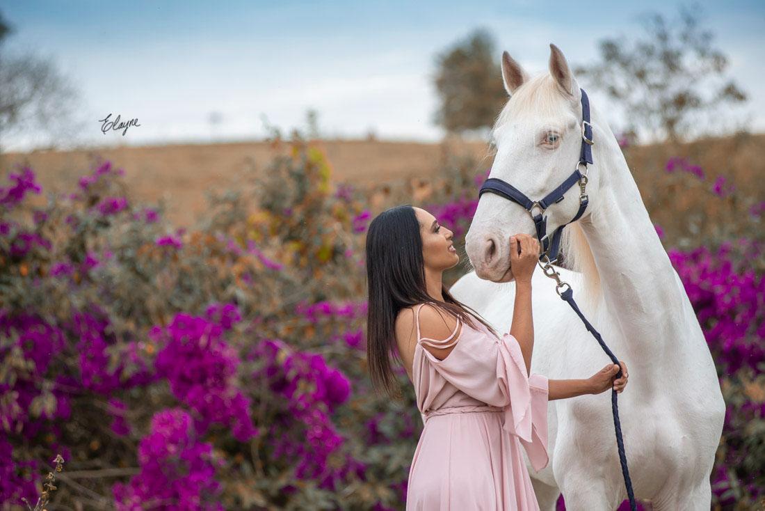foto com cavalo