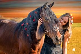 cavalo com flores em por do sol