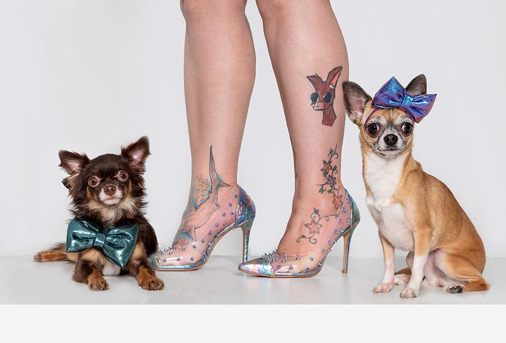 cachorros e sapato de salto