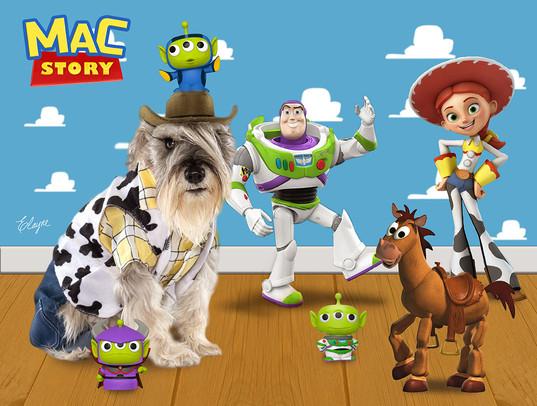 MAC Story