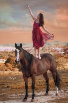 Cavalo e bailarina