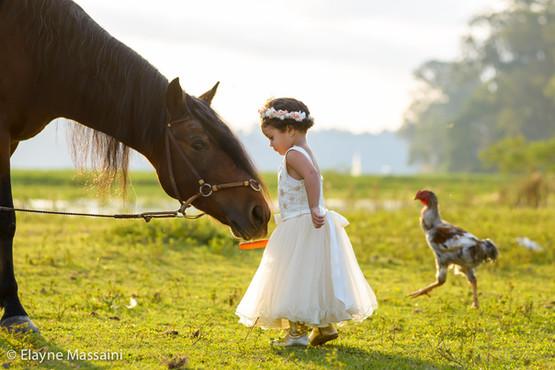 criança e cavalo
