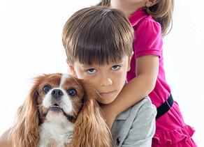 Cachorro e criança na sessão de fotos: Quem é mais difícil de lidar?