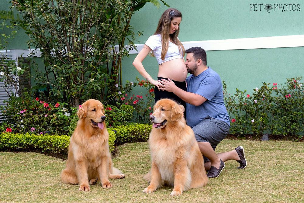 fotografia gestante e cachorro