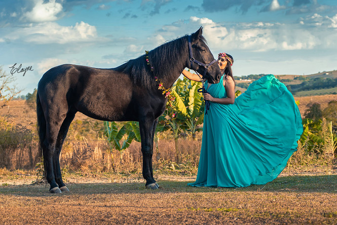 mulher vestido lindo e cavalo