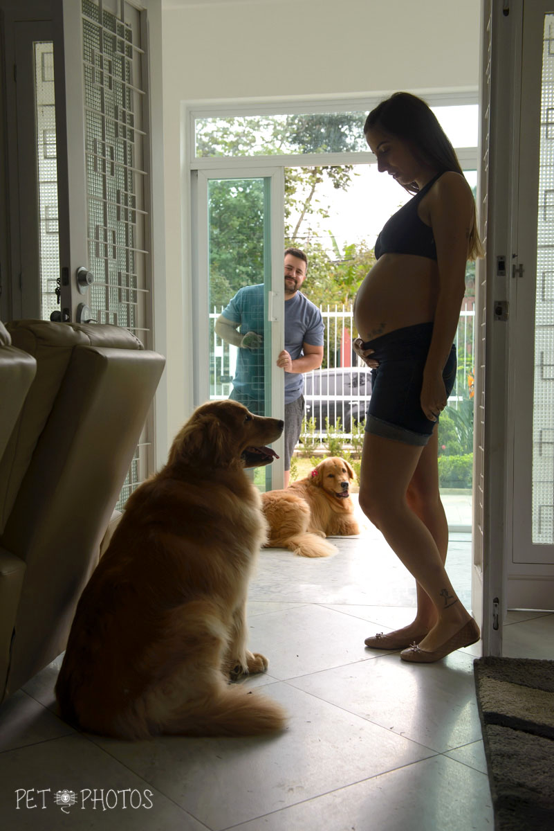 Mamãe e cachorros