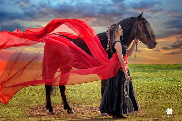 foto maravilhosa com cavalo