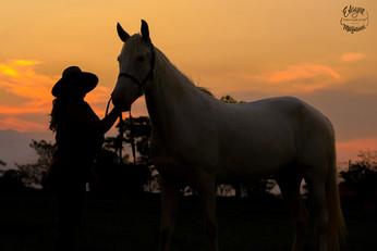 cavalo e mulher ao por do sol