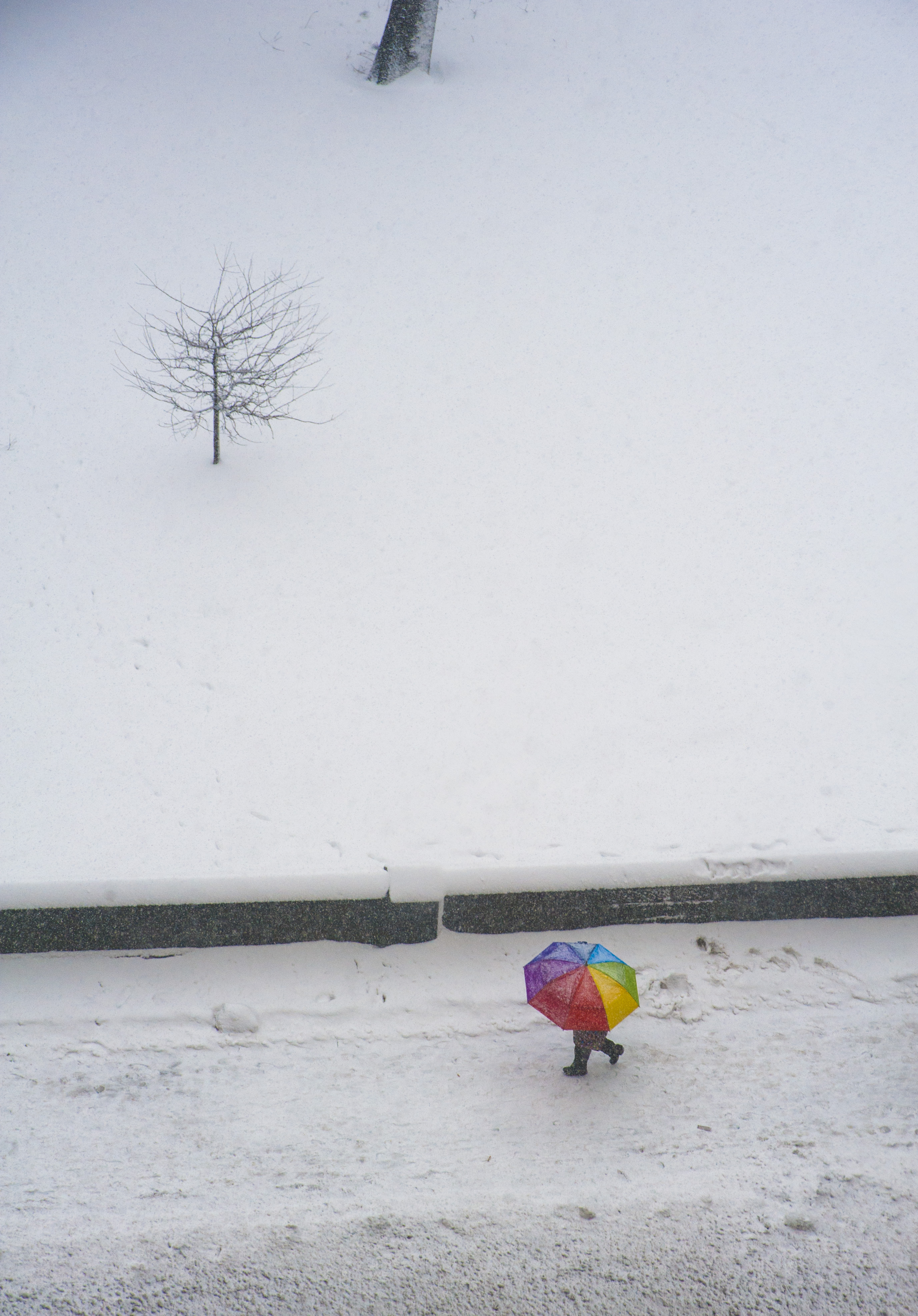 Rainbow Umbrella in Snow