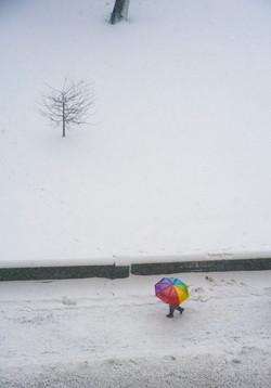 Rainbow Umbrella in Snow