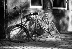 Bicycles - Amsterdam