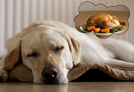 Turkey Day and Savings