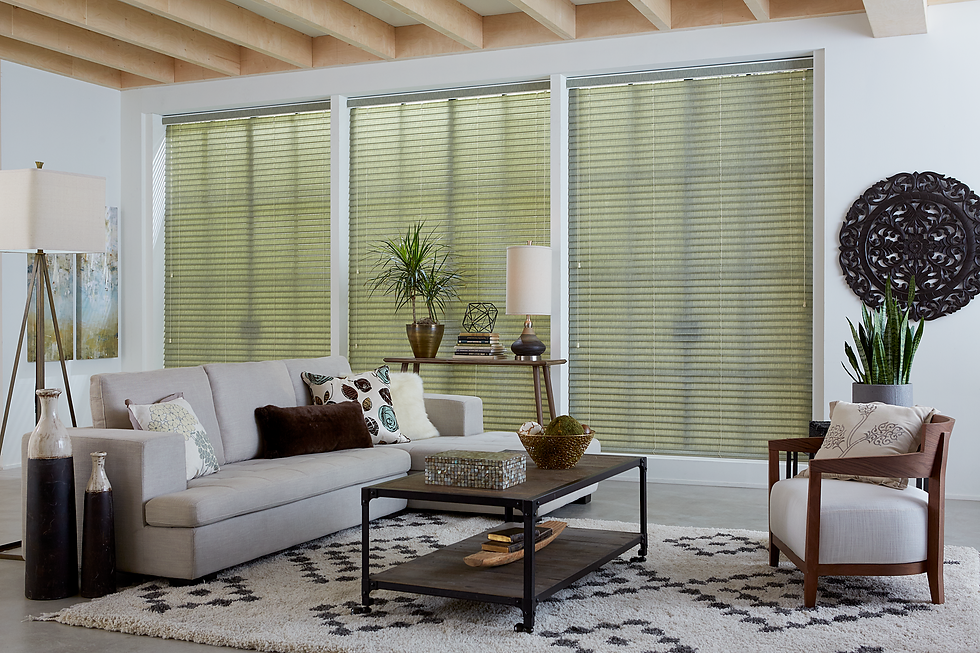 Apartment scene showcasing closed fabric window blinds.