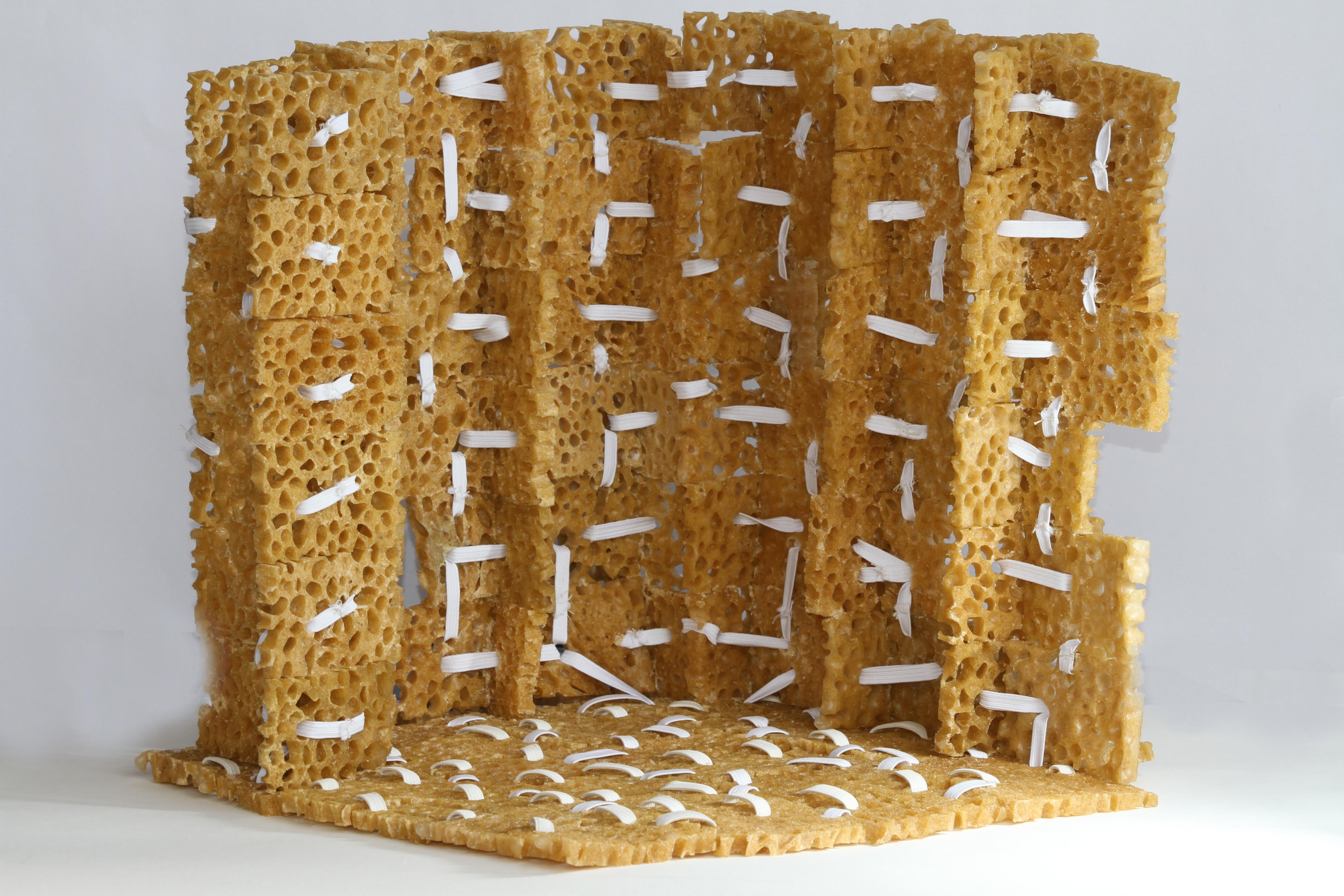 Sponge & Rubber walls