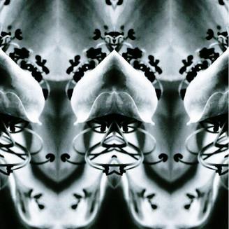 Terribili Simmetrie, Guerriero I copypri