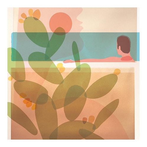 Cactus (Pool 3)