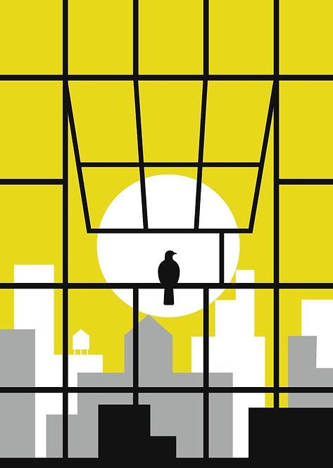 New York Nest (Window 4)