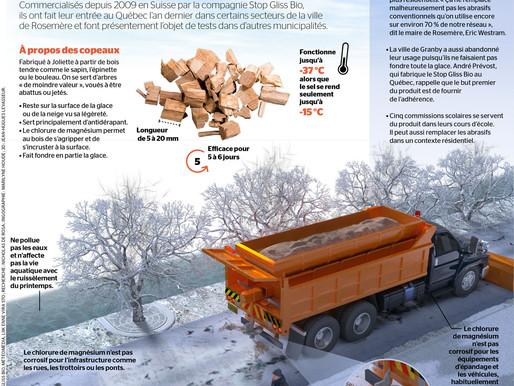 La France et l'Allemagne lancent la production de copeaux de bois traités