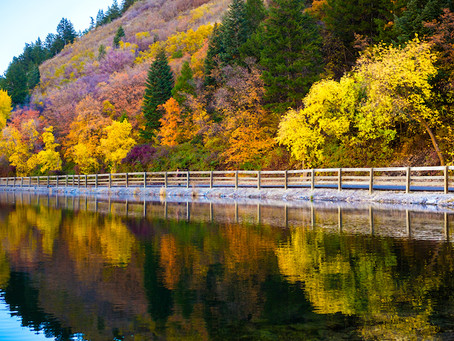 Where to Find the Best Fall Foliage in Provo!