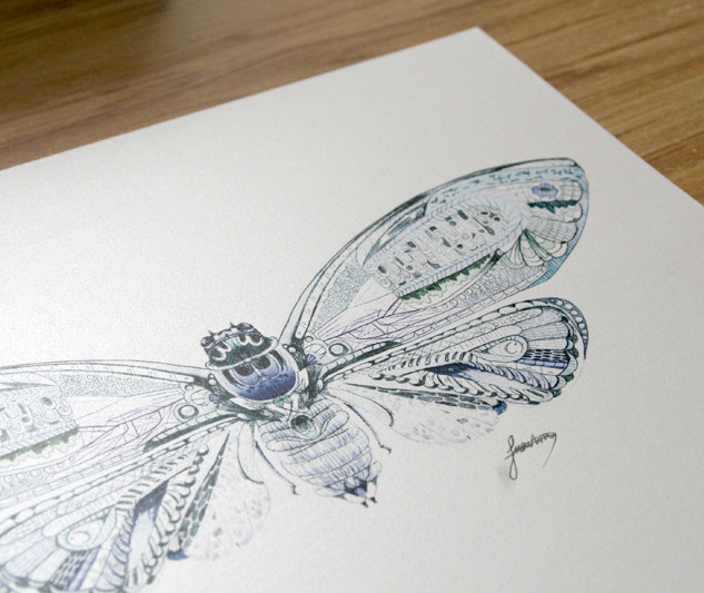 Web-16-Print-Cicada-2.jpg