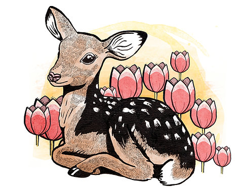 Fawn & Tulips