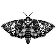 Wooden Badges_Sept 2019_Moth_web.jpg