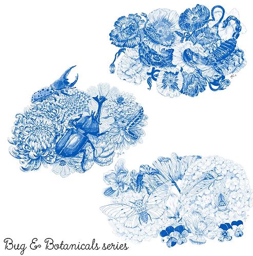 Bugs & Botanicals - All 3 - Art Print