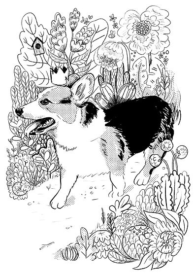 Colouring book - Corgi_web.jpg