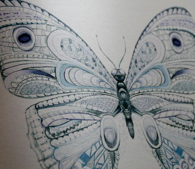 Web-16-Print-Butterfly-3.jpg