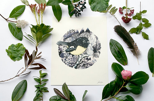 Tomtit/miromiro - New Zealand Native - Print