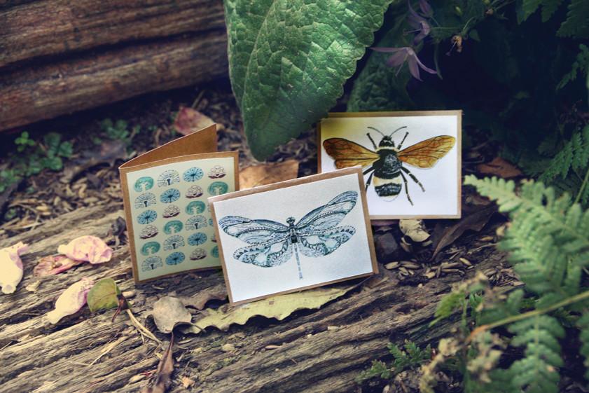 web-16_Mini-Cards-Nature-Pack-03-large.j