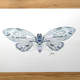 Web-16-Print-Cicada-3.jpg
