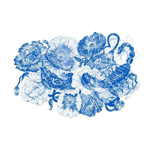 Scorpions - Bugs & Botanicals - Art Print
