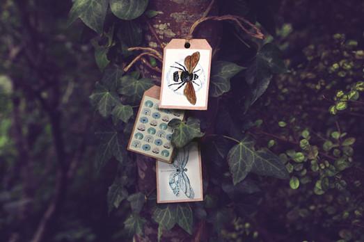 DD-Gift-tags-vines.jpg