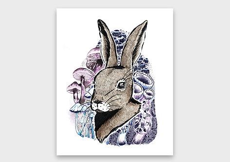 Rabbit & Mushrooms Print