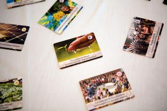 Ecovillage Design Cards