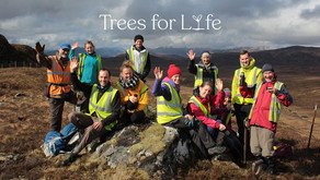 Trees for Life is Hiring