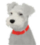 dog_COVID_FINAL_two.png