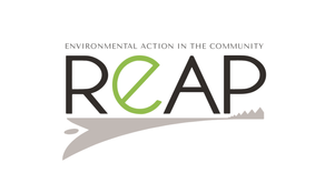 Opportunities at REAP