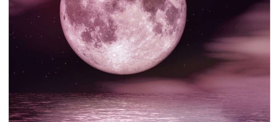 Relentless, Resilient Reflection: Full Moon in Scorpio