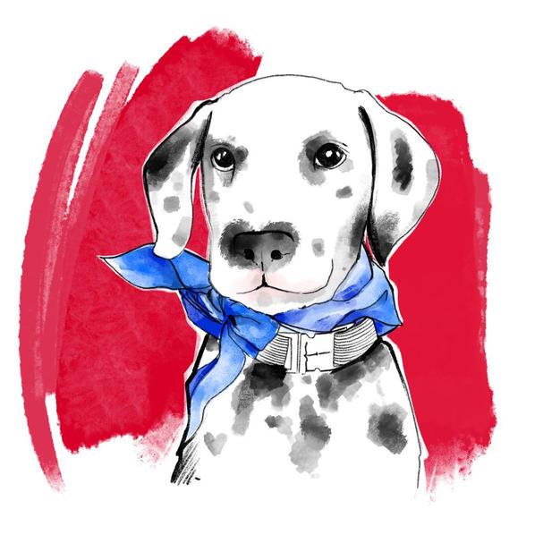 Custom Digital Pet Portrait - Horizonal