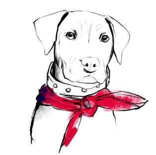 Custom Digital Pet Portrait - Vertical