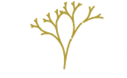 SL_Logo-e1464626096501.png