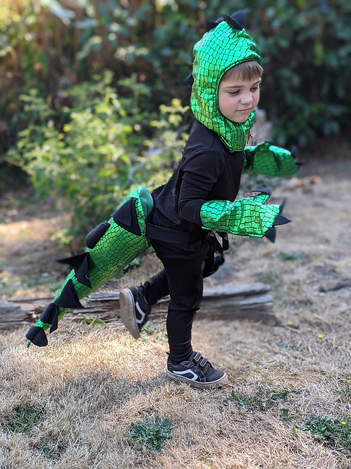 3 Piece Dinosaur Costume | Youth