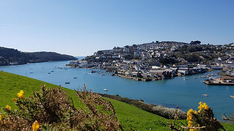 Salcombe - From Snapes Point 2.jpg